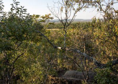 Nyathi Stand 129 (17 of 19)