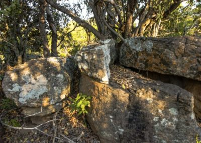 Nyathi Stand 129 (21 of 19)