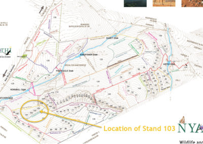 Stand-103-Zoom-out